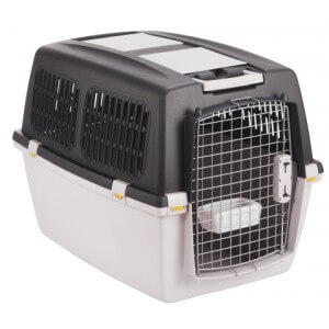 cage de transport chiot husky